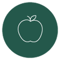 Green apple icon