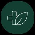 Naturpathic medicine icon